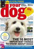 Your Dog magazine
