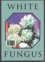 White Fungus magazine