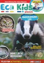 Eco Kids Planet magazine