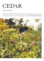 Cedar magazine