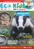Eco Kids Planet Issue 60 magazine