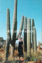 Delicate Rebellion 01 magazine