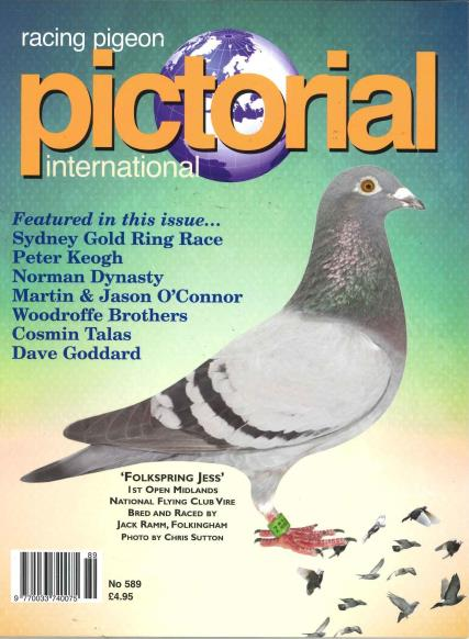 Racing Pigeon Pictorial magazine