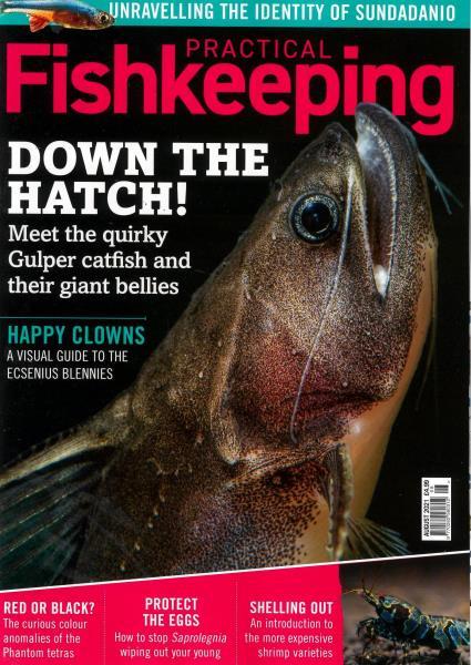 Practical Fishkeeping magazine