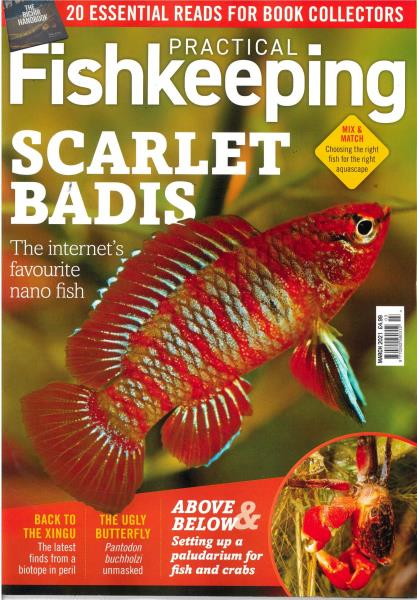 Practical Fishkeeping magazine