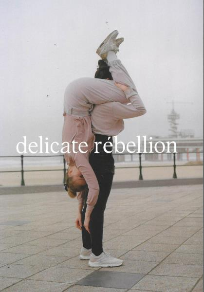 Delicate Rebellion magazine